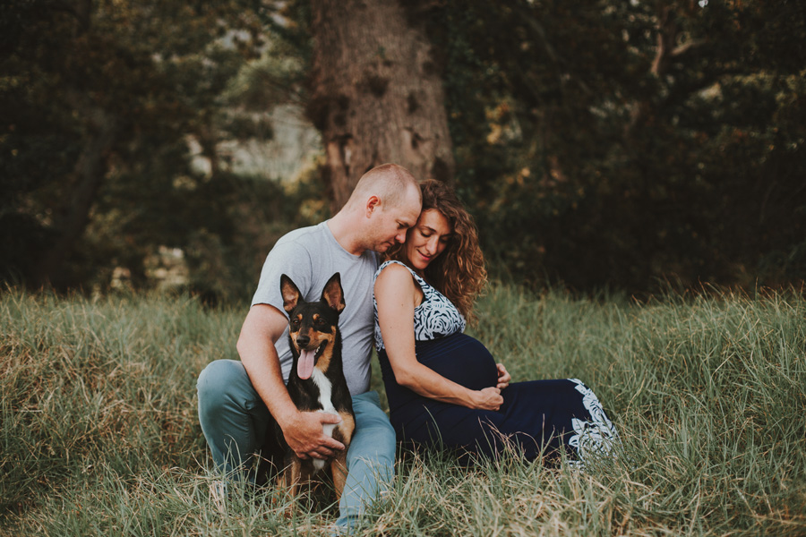 maternity shoot with dog