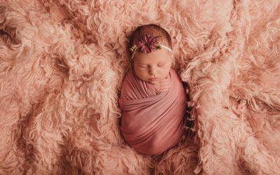 Newborn Baby Willow   Cape Town Newborn Photographer